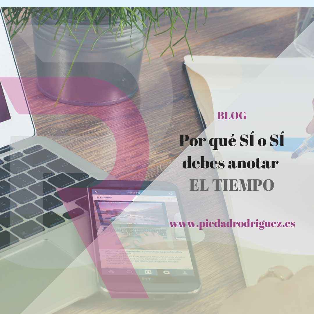 curso express gestiona en digital